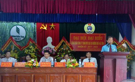 Công đoàn Cao su Hương Khê – Hà Tĩnh: Chia sẻ khó khăn, đồng hành cùng doanh nghiệp